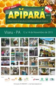 Apipara_web