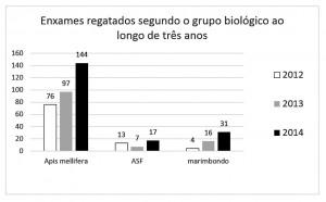 Figura 03 – Enxames resgatados segundo o grupo biológico ao longo de três anos.