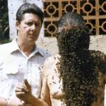 1988 – Barba de Abelha - Radamés e Luiz Zovaro