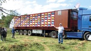 Foto 19 – Caminhão-apiário, veículo adaptado para a instalação de colmeias, contendo 192 colmeias fixas