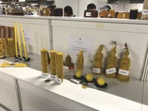 Foto 13 – Artesanatos em cera de abelha submetidas ao concurso da APIMONDIA.