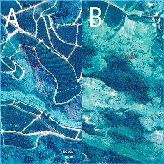 Figura 4: A da figura é a área do apicultor 1 Apicultor 1. B da figura Apicultor 2. Fonte: Google Maps, 2017.