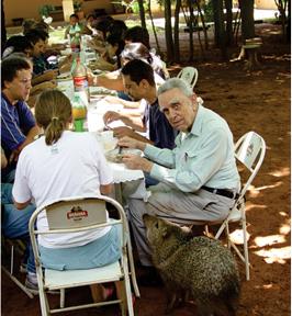 Na fazenda Aretuzina, os visitantes sempre contavam com a companhia de Paulo Nogueira-Neto e durante uns tempos, de um caititu domesticado que apreciava biscoitos de aveia.