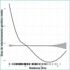 Figura 3 – Autocorrelação espacial no grau de relacionamento genético entre colônias de Melipona subnitida. A linha sólida representa o ajuste do modelo ao grau de relacionamento genético observado, enquanto área sombreada em cinza representa um intervalo de confiança de 95% em torno da distribuição nula (linha preta pontilhada). As barras verticais na base da figura indicam o número de pares de indivíduos comparados a cada distância.