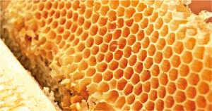 Enquanto o mel contém vitaminas benéficas ao organismo, proteína do arroz é rica em aminoácidos essenciais, o que favorece ganho de massa muscular em atletas Foto: Marcos Santos/USP Imagens.