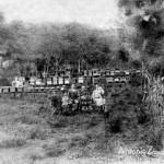 1928 – Apiário Sto. Onofre de Antônio Zovaro – Caieiras/SP