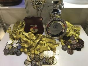 Foto 10 – Troféus e medalhas distribuídas aos ganhadores dos concursos de inovações, produtos e materiais apícolas da Apimondia.