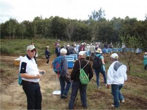 Visita técnica a apiário na Turquia durante APIMONDIA.