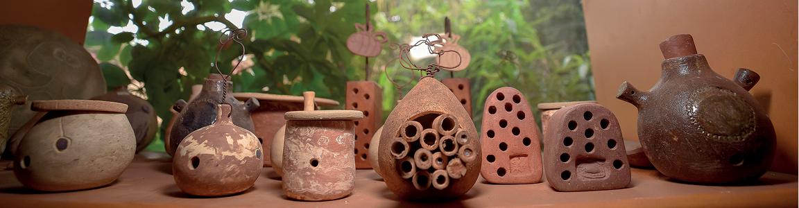 Potes de cerâmica para Euglossa – abelha das orquídeas ou abelhas de língua longa e ninhos em argila crua que podem ser ocupados por M. segmentaria