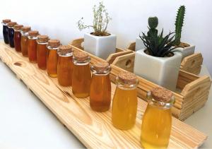 Figura 1: Diversidade de méis de abelhas sem ferrão. Cada espécie produz um produto único, com sabor, cor e aromas peculiares.