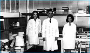 PNN e suas alunas Suzete Ceccato e Vera Lúcia Imperatriz numa sala do depto de zoologia da USP na frente de um tablado com colmeias de meliponíneos instaladas para observação do comportamento.
