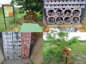 Figura 2. Hotel e casinhas para abelhas solitárias do Espaço ASA.
