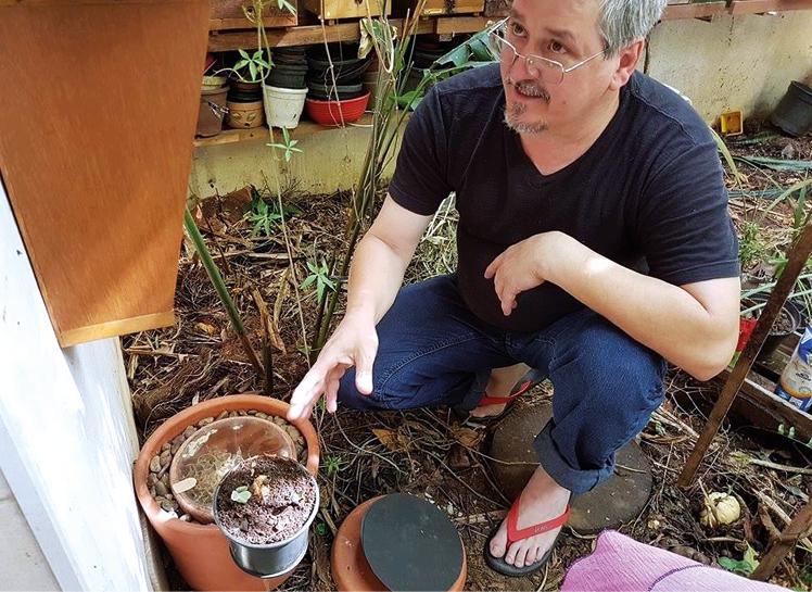 Fig.2 colmeia para jataí da terra (Paratrigona subnuda) idealizada por Gerson Pinheiro do SOS Abelhas sem Ferrão com potes de barro.