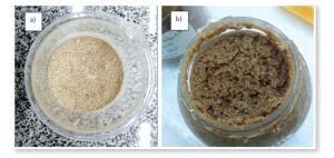 Figura 1: Ração Fresca (a) e Ração Fermentada (b). Nota-se o aspecto aerado após a fermentação, pela liberação de gases. Imagens do autor.