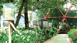 Foto: Reprodução / Plantas e pólen em áreas urbanas: uso no paisagismo amigável aos polinizadores.